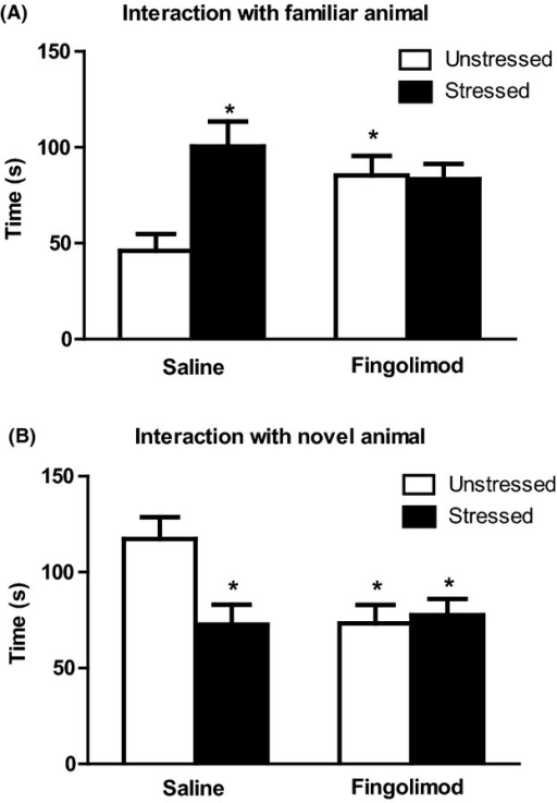 Fingolimod treatment mimicked and occluded the action of CUS in the social interaction test. Values of the recognition phase of test relative to the interaction with the familiar and the novel conspecific are shown in (A) and (B), respectively. Values are means + SEM n = 7 and 11 for unstressed mice treated with saline or fingolimod, respectively; n = 7 and 12 for CUS (stressed) mice treated with saline and fingolimod, respectively. Two-way ANOVA + Fisher's LSD; time spent with the familiar conspecific, stressed/unstressed: F3,33 = 6.63, P < 0.05; drug treatment: F3,33 = 1.205, P > 0.05; stressed/unstressed × drug treatment, F3,33 = 7.64, P < 0.05; time spent with the novel conspecific, stressed/unstressed: F3,33 = 3.96, P > 0.05; drug treatment: F3,33 =  3.71, P > 0.05; stressed/unstressed × drug treatment, F3,33 = 5.82, P < 0.05. Post hoc analysis: *P < 0.05 versus the respective values obtained in unstressed mice treated with saline.