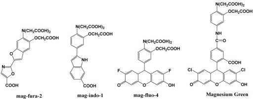 Chemical structures of magnesium fluorescent probes possessing an APTRA group.