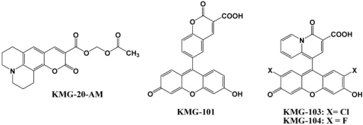 Chemical structures of magnesium fluorescent probes possessing β-diketone group.