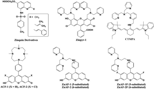 Chemical structures of zinc fluorescent probes.