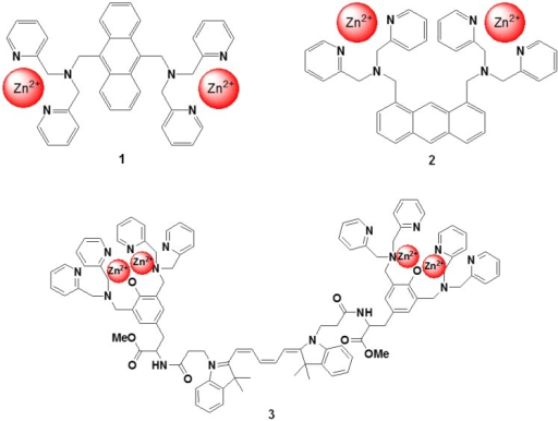 Chemical structures of fluorescent molecular probes targeting phosphorylated peptide or proteins.