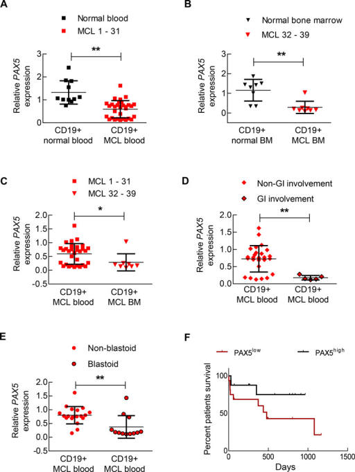 Decreased PAX5 levels in MCL cells promote lymphoma dispersal and can be used to predict a worse prognosis in MCL patients(A) CD19+ B cells were isolated from MCL biopsy or apharesis samples (n=31) or from normal blood (n=10), and the PAX5 mRNA levels were determined via qRT-PCR. Each replicate was performed in triplicate, and the expression levels were normalized to GAPDH. (B) CD19+ cells were purified from bone marrow of normal individuals (n=8) or MCL patients (n=8), and the PAX5 mRNA levels determined via qRT-PCR. Each replicate was performed in triplicate, and the expression levels were normalized to GAPDH. (C) PAX5 mRNA was downregulated in the bone marrow samples of MCL patients compared to the corresponding blood samples. (D) CD19+ cells isolated from GI-involved MCL patients (n=5) contained lower levels of PAX5 mRNA than CD19+ cells from non-GI-involved MCL patients (n=26). (E) CD19+ cells isolated from blastoid MCL patients (n=12) contained lower levels of PAX5 mRNA than CD19+ cells from non-blastoid MCL patients (n=19). A list of samples examined in (D) and (E) is presented in Supplementary Table 3. (F) The overall survival of MCL patients was significantly decreased in the PAX5low population compared to the PAX5high population (p < 0.05; Mantel-Cox curve analysis) (n=32). 'PAX5high' refers to the upper 50% of the PAX5 levels in the MCL patients and 'PAX5low' refers to who exhibit lower 50% of the PAX5 levels in the MCL patients. A list of samples is presented in Supplementary Table 5. *p < 0.05 (vs. PAX5control; Student's t-test); **p < 0.005 (vs. PAX5control; Student's t-test). n.s. indicates a non-significant difference.
