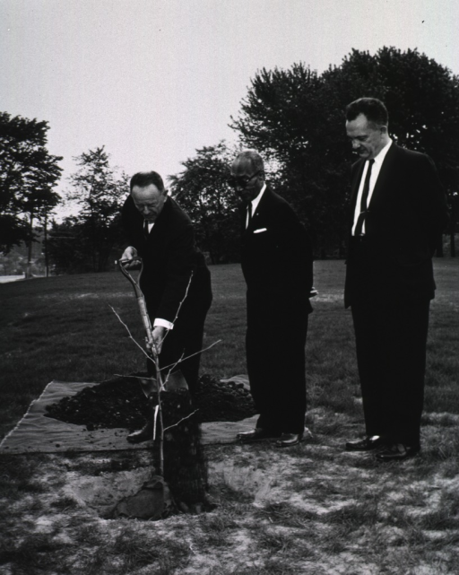 <p>Exterior view: As Mr. Smith and Dr. Rogers look on, Dr. Daniels adds a shovel of dirt to a cutting from the &quot;Hippocrates&quot; plane tree presented to NLM by the Greek Ambassador Alexis Liatis.</p>