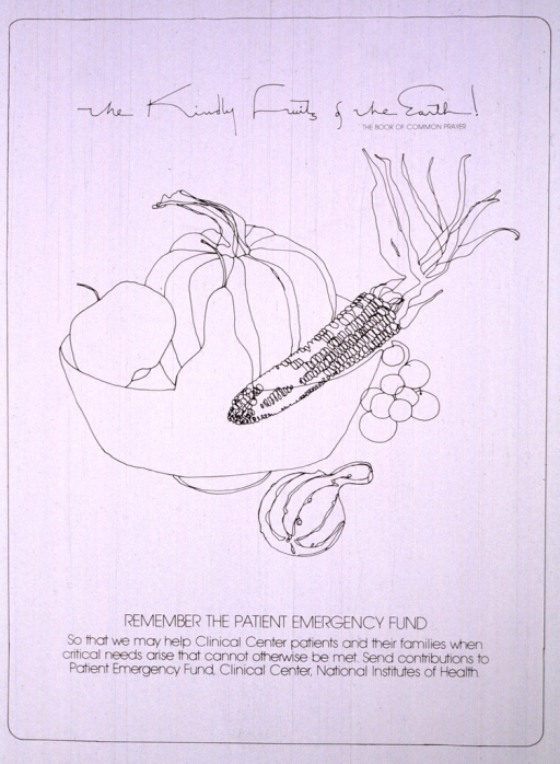 <p>An apple, a pear, a pumpkin, and an ear of corn sit in a bowl.  On the right side of the bowl is a small cluster of grapes and a gourd.  The first picture caption appears above the image.</p>