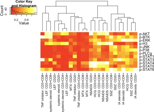 Drug therapy affects the phosphorylation levels of signaling effectors in ERA PBMC.Hierarchical clustering heatmap showing the level of statistical significance, as a p value, for the difference in MFI values for each indicated phospho-signaling effector comparing patients on therapy versus patients not on therapy. Statistical differences were calculated by Student's t test.