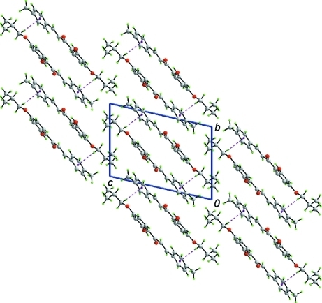 A view in projection along the a axis of the unit cell contents in (I), showing C–H···π interactions (purple dashed lines) between the supramolecular chains illustrated in Fig. 2. Colour code: O, red; C, grey; and H, green.