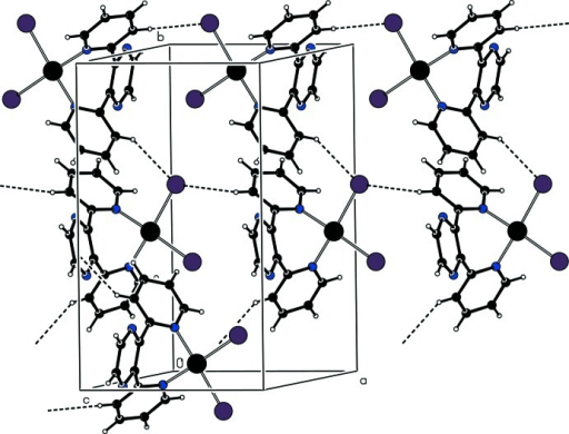 View of the hydrogen-bond interactions of the title complex. Hydrogen-bonds are drawn with dashed lines.