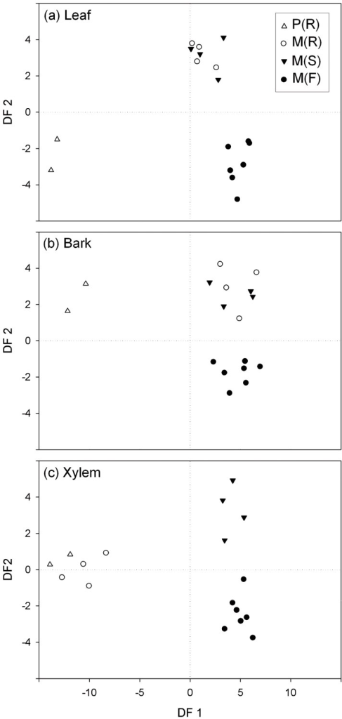 Separation of elm trees on basis of tissue specific phenolic profiles.Discriminant function analysis score scatter plot for the HPLC chromatogram peaks of samples taken from leaf (a), bark (b), and xylem (c) tissues from different groups of trees: P (R) = resistant U. pumila clones from Puerta de Hierro Forest Breeding Centre; M (R) = resistant U. minor clones from Puerta de Hierro Forest Breeding Centre; M (S) = susceptible U. minor clones from Puerta de Hierro Forest Breeding Centre; and M (F) = U. minor trees from the Rivas-Vaciamadrid site.