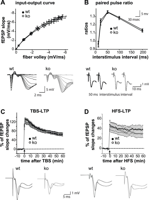 Normal Synaptic Transmission And Plasticity In Gpr55 Ko Open I