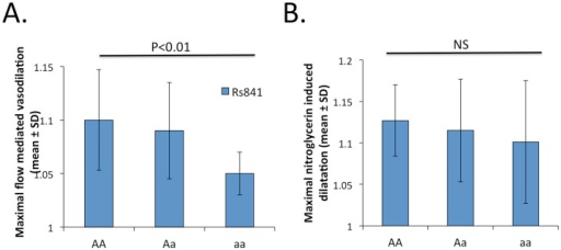 Relationship between rs841 polymorphism in the 3'-UTR of GCH1 gene and vascular function measured as endothelium dependent FMD (panel A) and endothelium independent NMD) (panel B).AA indicates frequent homozygote, Aa - heterozygote, aa - rare homozygote.