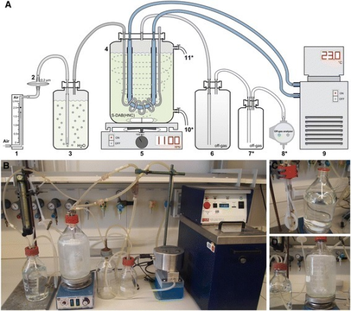 Schematic diagram and photos of the SSB system. Schematic diagram of SSB system (A): flowmeter (1), 0.2 μm venting filter (2), 1-L pre-wetting bottle (3), 2-L cultivation bottle (4), magnetic stirrer (5), 1-L safety bottle for off-gas (6), optional second 0.5-L safety bottle for off-gas (7*), optional off-gas analyzer (8*), circulating thermostat (9), optional sample port (10*), optional liquid inlet port (11*). Devices marked with an asterisk are optional and not required for successful operation of the SSB system. Overview of the SSB system (B), sparger and cooling finger (C), and pre-wetting and cultivation bottles (D). For details of the assembly of the SSB system please refer to Additional file 1.