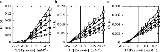 Effects of oxamate on the catalytic reactions at pH 7.0. The reaction velocities for FNLDH (a), PALDH (b), and ECLDH (c) were measured in 50 mM MOPS-NaOH buffer (pH 7.0) containing 0.1 mM NADH, the indicated concentrations of pyruvate and several concentrations of oxamate. The concentrations of oxamate for FNLDH were 0 mM (open circles), 10 mM (closed circles), 20 mM (open triangles), 30 mM (closed triangles), and 40 mM (open squares). The concentrations of oxamate for PALDH were 0 mM (open circles), 0.1 mM (closed circles), 0.2 mM (open triangles), 0.3 mM (closed triangles), and 0.4 mM (open squares). The concentrations of oxamate for ECLDH were 0 mM (open circles), 5 mM (closed circles), 10 mM (open triangles), 15 mM (closed triangles), and 20 mM (open squares). The reaction velocity and the concentration of pyruvate were plotted reciprocally. The data for PALDH and ECLDH were interpreted using the equation for mixed type inhibition, whereas the data for FNLDH were interpreted using the equation for competitive type inhibition. The kinetic parameters were as follows; FNLDH: kcat = 79 ± 1 (s−1), Km = 0.39 ± 0.01 (mM), and Ki = 9.4 ± 0.2 (mM). PALDH: kcat = 410 ± 10 (s−1), Km = 0.074 ± 0.006 (mM), Ki = 0.29 ± 0.04 (mM), and Ki' = 0.33 ± 0.04 (mM). ECLDH: kcat = 670 ± 10 (s−1), Km = 5.6 ± 0.3 (mM), Ki = 20 ± 2 (mM), and Ki' = 47 ± 6 (mM). GraFit ver 7.0.3 was used for non-linear regression and calculation of values. The lines were calculated with kinetic parameters.