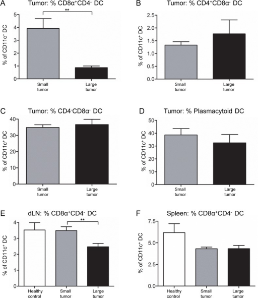 CD8α+CD4- DC proportions decrease in mice with large mesothelioma tumors.DC subsets were identified as described in Fig 8. The proportions of CD8α+CD4- DCs (A), CD4+CD8α- DCs (B), CD4-CD8α- DCs (C) and plasmacytoid DCs (D) within small versus large AE17 tumors were compared. The proportion of CD8α+CD4- DCs in dLN (E) and spleens (F) of tumor-bearing mice were compared to healthy mice: n = 18 mice with small tumors, n = 9 mice with large tumors and n = 8 healthy control mice. Pooled data are shown as mean ± SEM. ** = p < 0.005.