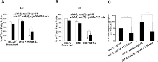Dietary C20PUFA supplementation reduced the number of lipid droplet aggregates in CGI-58 and AMPK; CGI-58 mutants.(A)-(B) Dietary supplementation of C20PUFA enriched the lipid droplet C20PUFA composition of daf-2; aak(0); cgi-58(A) and daf-2; cgi-58(B) dauer larvae represented by their increased C20PUFA portion. (C) Less lipid droplet aggregates were observed in both the daf-2; cgi-58 and daf-2; aak(0); cgi-58 animals following C20PUFA dietary supplementation. Lipid droplets with a volume greater than 20 μm3 are considered as aggregates.