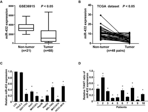MiR-432 is downregulated in HCC cell lines and tissues(A). Expression profiling of miRNAs showing that miR-432 is downregulated in HCC tissues (T) compared with matched non-cancerous liver tissue (N) (n = 89, p<0.001; NCBI /GEO /GSE 36915). (B). Expression profiling of miR-432 from The Cancer Genome Altas (TCGA) datasets in liver hepatocellular carcinoma ((http://cancergenome.nih.gov/). (C). Real-time PCR analysis of miR-432 expression in normal human LO2 hepatocyte and in HCC cell lines (Hep3B, MHCC97L, Huh7, HCCC-9810, HepG2, BEL-7402, MHCC97H and QGY-7703). Transcript levels were normalized to U6 expression. (D). Real-time PCR analysis of miR-432 expression in primary HCC tissues (T) with matched adjacent non-tumor tissues (ANT) from eight individual patients. Transcript levels were normalized to U6 expression. Each bar represents the mean ± SD of three independent experiments. *P < 0.05.