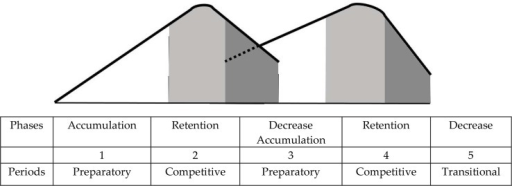 Correlation of phases of the performance level development and training periods in a two-cycle model of year round periodization (Matwejew, 1964).