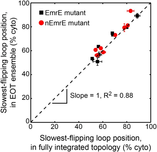 Comparison of the average position of the slowest-flipping loop in the EOT ensemble to the average position of that same loop in the ensemble of fully integrated configurations.For the K3, L85R, nEmrE, and nT28R1 mutants, which have two slow-flipping loops, the axes of this plot are defined so as to account for the positions of both loops, as described in the Alternative definition of the slowest-flipping loop position for mutants with two slow-flipping loops section of the 'Materials and methods'. The black dashed line indicates perfect correlation.DOI:http://dx.doi.org/10.7554/eLife.08697.018
