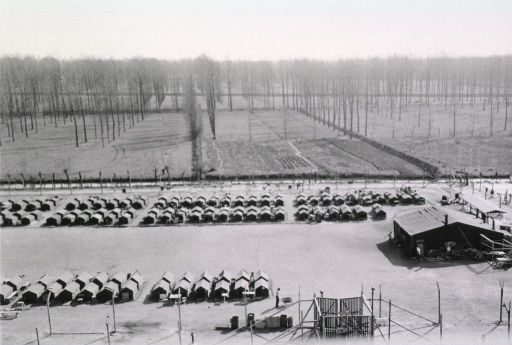 <p>Rows of small, one-story structures stand behind a fence. In the distance rise rows of tall trees.</p>