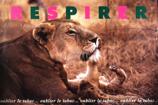 <p>A lioness is lying on the ground while her cub lies on its back, playfully batting her muzzle.  The word &quot;respirer&quot; appears at the top of the poster in fluorescent pink and green lettering.  The phrase &quot;oublier le tabac&quot; is repeated across the bottom portion of the poster.</p>
