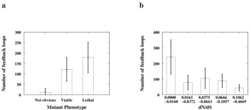 Correlation between the functional importance of proteins and the NuFBL. (a) The NuFBL's were plotted against the mutant phenotypes of the proteins in the network where proteins were classified according to the previous report [1]. (b) The NuFBL's were plotted against the evolutionary rate [1] (dN/dS) of proteins which were grouped into five different classes according to their evolutionary rates. For each protein group, the average and the confidence interval for 95% confidence level of the NuFBL are shown on the y-axis (see additional data file 4 for further details).