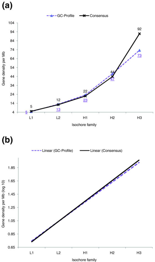 Correlation between isochore classification and gene density. (a) A comparison of the gene density in the consensus isochore map and the GC-Profile segmentation. The underlined data labels denote the gene densities of the GC-Profile segmentation, the non-underlined labels the gene densities of the consensus map. In the consensus assignment more genes can be found in the H3 isochore family than in the GC-Profile assignment. The consensus assignment thus provides a stronger signal in terms of the expected correlation between gene density and isochore class. (b) Linear regression lines of the logarithmized (base 10) gene density values for the isochore families L1 to H3. The isochore families were numbered from 1 to 5 to compute the regression. The slope of the regression line is slightly greater for the consensus isochore map.