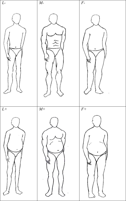 The six body forms used in the study: Three types of body forms were as shown in columns.1. Lean (L - narrow shoulders, thin torso and extremities, knee and elbow joints thicker than thy and arm diameter). 2. Muscular (M – Broad shoulders, curved extremities, chest and abdominal muscles shown, thy and arm diameters greater than knee and elbow joints). 3. Slightly fat and feminine (F – rounded shoulders, cylindrical extremities). Each of the three body forms was represented with (designated by +) and without (−) abdominal obesity as shown in rows. The sequence of these figures was randomized during the test and the figures were labeled serially by alphabets.