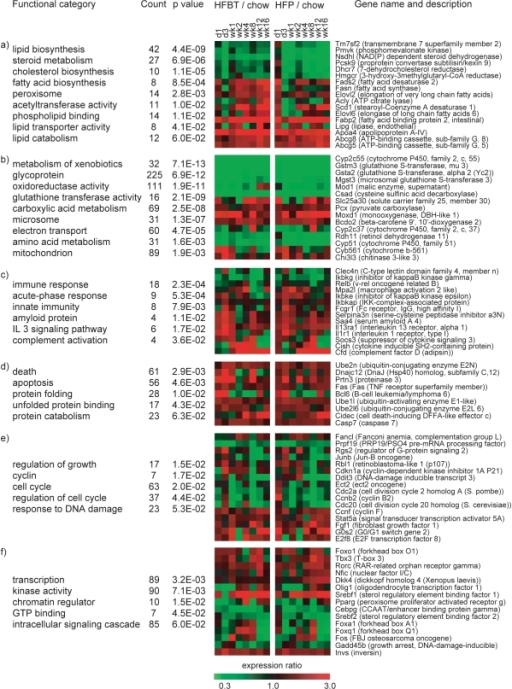 Functional characterization of the high-fat responsive genes.Representative overrepresented functional categories in the set of 1663 high-fat responsive genes are grouped according to their biological function: (a) lipid and cholesterol metabolism, (b) oxidative and metabolic processes, (c) inflammatory and immune response, (d) apoptosis and protein folding, (e) cell growth and cell cycle and (f) transcription regulation and signal transduction. For each functional group, representative genes are listed and their expression profiles (average HFBT vs. chow and HFP vs. chow expression ratios per time-point) are shown in the adjacent diagrams.