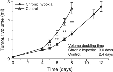 Tumour growth during chronic inspiratory hypoxia (O2 fraction 8%, n=22) and in normoxic control tumours (n=18). Values are expressed by mean±s.e.m.; **P<0.001.