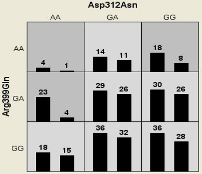 Distribution of high-risk (dark shaded) and low-risk (light shaded) genotypic combinations of the markers studied. The summary of the distribution illustrates the no. of patients (left bars) and controls (right bars) for each genotype combinations.