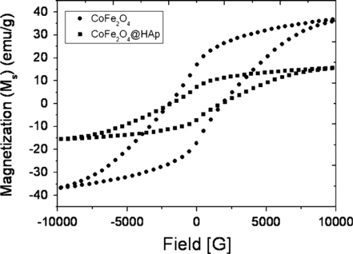 Hysteresis loops obtained from a VSM measured operating at room temperature for CoFe2O4, and apatite (Ap)-coated citric acid–stabilized cobalt ferrite (CFCA-Ap) particles.
