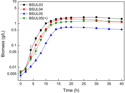 Cell growth comparison of different isobutanol-producing B. subtilis.  The experiments were carried out in LBGSM-I medium under microaerobic conditions. The plus symbol indicates that the strain was cultivated in the medium supplemented with 3 g/L sodium acetic acid.