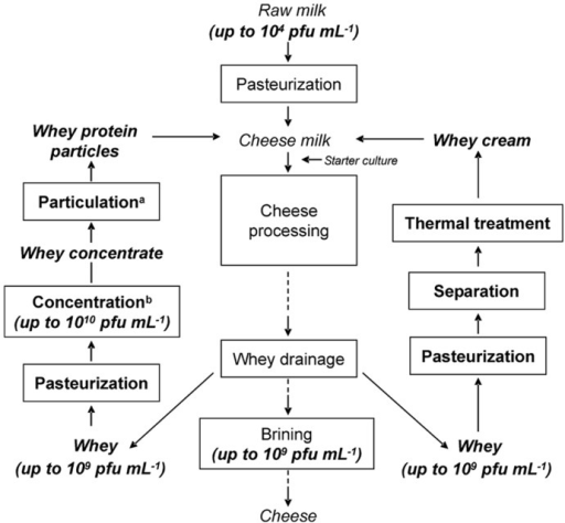 Flow Chart Of A Cheese Making Process In Which Concen Open I