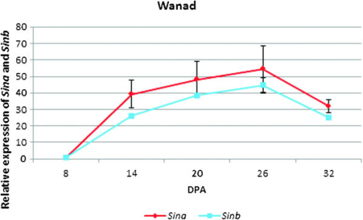 Profiles of Sina (upper line) and Sinb (lower line) gene expression in developing spikes of the non-transgenic plants of cv. Wanad from 8th to 32nd day after pollination (DAP).