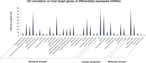 GO annotation of host target genes of differentially expressed miRNAs.GO functional analysis using the DAVID web-based tool shows that a series of targets belong to a series of functional genes involved in cellular process, metabolic process, and immune system process, which indicated the potential regulatory role of the differentially expressed miRNAs in viral infection. For other enriched GO terms, please see S4 Table.