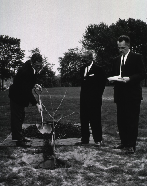 <p>Exterior view: As Mr. Smith and Dr. Rogers look on, Mr. Grim adds a shovel of dirt to a cutting from the &quot;Hippocrates&quot; plane tree presented to NLM by the Greek Ambassador Alexis Liatis.</p>
