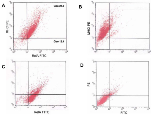 NF-κB activity in MHCI negative and MHCI positive cells. (A) A representative flow cytometry analysis of the expression of MHCI and NF-κB subunit RelA/p65 proteins showing that epidermal cells that exhibit low expression of RelA/p65 also exhibit lack/low expression of MHCI. The geometrical mean channel fluorescence of the populations is indicated. (B) Single positive control for PE. (C) Single positive control for FITC. (D) Secondary control.