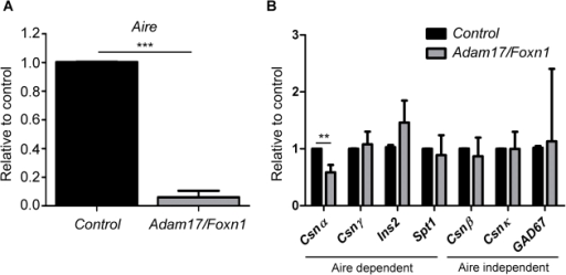 Aire mRNA expression is reduced in Adam17/Foxn1 EpCAM+ TECs.FACS-sorted CD45-Ter119-EpCAM+ TECs were pooled from 8-week old Control and Adam17/Foxn1 mice (n≥3 for each pool). qRT-PCR for Aire (A) and TRA (B) expression was determined from 3 independent experiments. Rpl7 was used as the internal control and expression levels were determined relative to mean expression in Control mice. Data represent mean + SD; p<0.05 (*), p<0.01 (**), p<0.001 (***). Control: fl/+ or fl/fl; Adam17/Foxn1: Cre fl/fl.