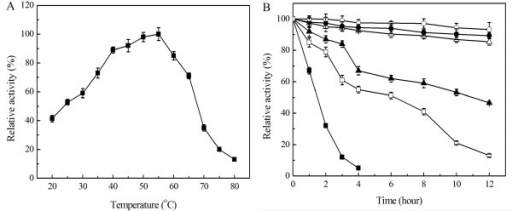 effect of temperature and cu2 on abscorbic acid stability Influence of ph, temperature, metal ions and ascorbic acid metal ions (cu2+ and fe2+) proved to be capable of accelerating betacyanin stability against the detrimental effects caused by ph, temperature and metal ions.