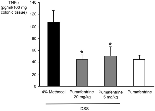 Effect of pumafentrine on colonic mucosa TNFα concentration.Mice were exposed to 3.5% DSS in drinking water for 11 days and were treated with pumafentrine (either 1.5 mg/kg/d (n = 8) or 5 mg/kg/d (n = 16) orally once daily for 11 days) or 4% methocel (n = 12). Non-DSS mice received 20 mg/kg/d pumafentrine or 4% methocel (n = 8). At day 11, the end of experiment, the colon was removed, weighed, vortexed in PBS and centrifuged. TNFα was quantified in the eluate by ELISA. Values represent mean ± SEM; *p<0.05 versus DSS+methocel.