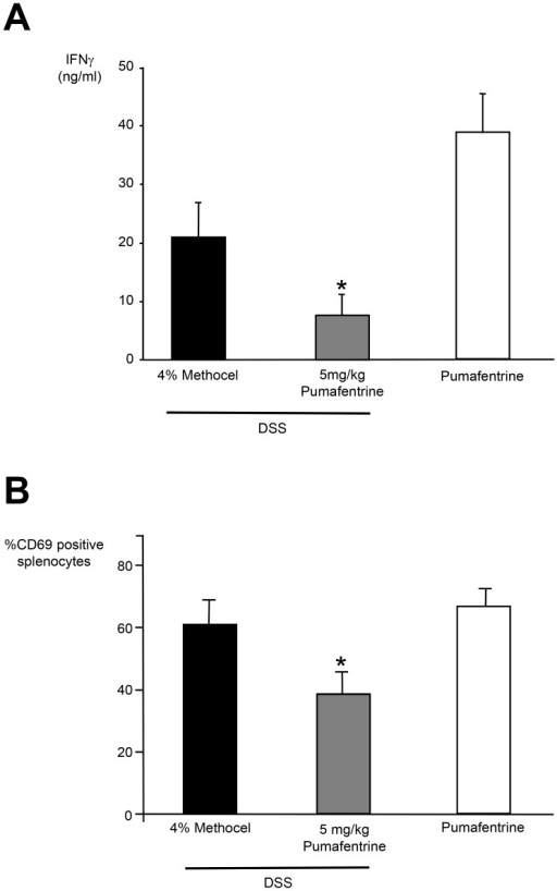 Systemic effects of pumafentrine. A Effect of in vivo administered pumafentrine on PMA/ionomycine-induced IFNγ synthesis by splenocytes from DSS-exposed mice.Mice were exposed to 3.5% DSS in drinking water for 11 days and were treated with pumafentrine 5 mg/kg/d (n = 8) orally once daily for 11 days) or 4% methocel (n = 8). Non-DSS mice received 20 mg/kg/d pumafentrine (n = 8). After day 11 spleens were removed aseptically and splenocytes were isolated. After a 20 h incubation period with PMA 25 ng/ml and ionomycine 500 ng/ml, the experiment was stopped by three freeze-thaw cycles and total IFNγ was measured by ELISA. Results are depicted as mean ± SEM. *p<0.05 versus DSS+methocel. B. Effect of in vivo administered pumafentrine on PMA/ionomycine-induced CD69 expression by splenocytes from DSS-exposed mice. Mice were exposed to 3.5% DSS in drinking water for 11 days and were treated with pumafentrine 5 mg/kg/d (n = 8) orally once daily for 11 days) or 4% methocel (n = 8). Non-DSS mice received 20 mg/kg/d pumafentrine (n = 8). After day 11 spleens were removed aseptically and splenocytes were isolated and stimulated with PMA 25 ng/ml and ionomycine 500 ng/ml. After 20 h incubation period the CD69-expression was determined by flow cytometry. Bars represent the mean ± SEM of CD69 positive splenocytes. *p<0.05 versus DSS+methocel.