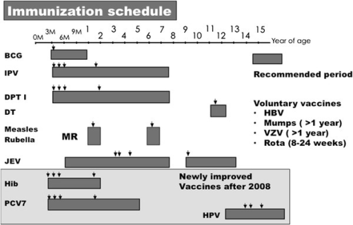 Immunization schedule. BCG, IPV, DPT, DT, MR, JEV, Hib, PCV7, and HPV were recommended vaccines and HBV, Mumps, VZV, and Rota vaccines were voluntary vaccines. Arrows show the recommended timing for vaccinations. BCG Bacillus Calmette Guérin, IPV Inactivated polio vaccine, DPT Diphtheria and tetanus toxoids combined with pertussis vaccine, DT Diphtheria and tetanus toxoids, MR Measles and rubella-combined vaccine, JEV Japanese encephalitis vaccine, Hib Haemophilus influenzae type b vaccine, PCV7 7-valent Str. pneumoniae vaccine, HPV Human papilloma virus vaccine, HBV Hepatitis B virus vaccine, VZV Varicella zoster virus vaccine