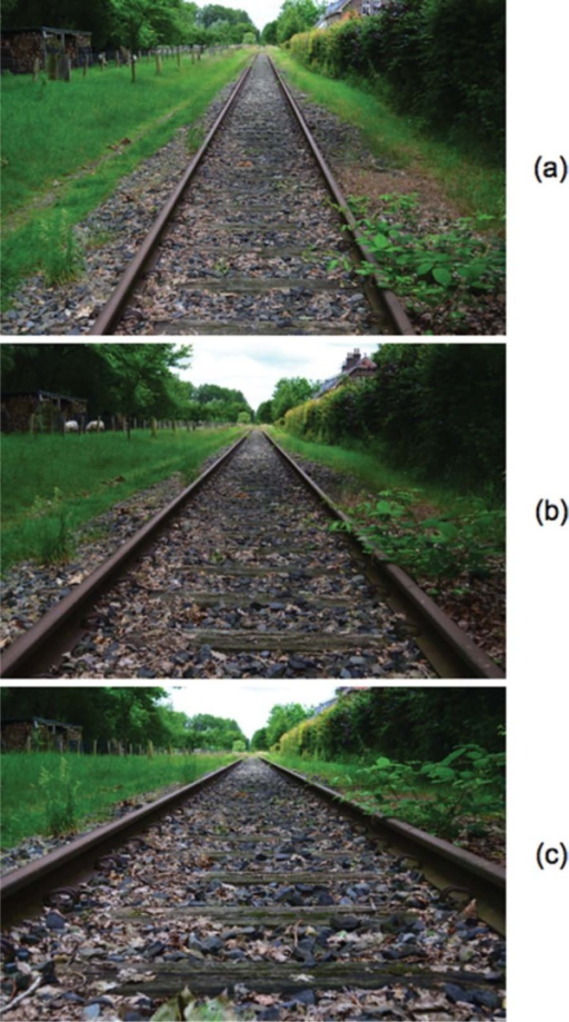 Disused railway track. The angle between the rails was judged at three different eye heights, 1.60 m (a), 1.00 m (b), and 0.40 m (c), respectively. The angles between the rails were 48° (a), 71° (b), and 122° (c) in the proximal stimuli.