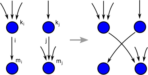 Schematic of a link swap that increases assortative in-degree correlations in the network without changing the in- and out-degrees of the nodes.