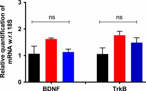 Expression levels of mRNA for BDNF and TrkB in lumbar (L4-L6) spinal cord of RR-EAE mice administered either ALA at 10 mg kg−1 day−1 or vehicle for 3 weeks did not differ significantly (F(2,8) = 3.8; BDNF and F(2,7) = 3.59; P > 0.05) from the respective data for the lumbar spinal cord of vehicle-treated sham-mice (one-way ANOVA followed by Tukey's multiple comparison test). EAE, experimental autoimmune encephalomyelitis, Veh, vehicle; ALA, alpha lipoic acid; BDNF, brain-derived neurotrophic factor; TrkB, tyrosine kinase B; ANOVA, analysis of variance.