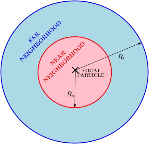 Interaction neighborhoods.Short- and long-range interaction neighborhoods for a given individual. The regions are defined by their radius Rs and Rl respectively.