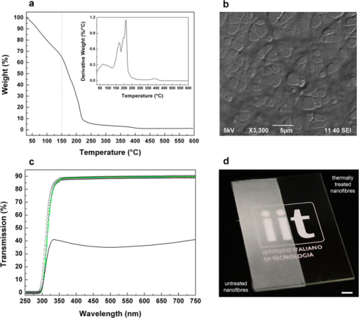 Transparent coatings from thermally-treated PECA fibers.(a) TGA thermogram and relative derivative curve (inset) of the PECA fibers. (b) SEM image of the textured PECA coating produced by thermally treating the electrospun fibers at 150 °C. (c) Optical transmission spectra of the glass substrate (white circles) and of the electrospun mat deposited on the glass substrate before (solid black curve) and after (solid green curve) the thermal treatment. (d) Photograph of the as-prepared PECA fibers on the glass substrate (sample on the left) and of the textured thermally-treated coating on the glass substrate (sample on the right). Scale bar = 0.5 cm. Use of the institutional logo with permission of Istituto Italiano di Tecnologia.