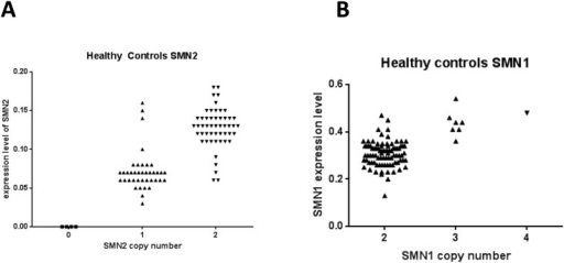 SMN copy number determines expression of SMN in healthy subjects.The copy number and the expression levels of SMN2 are closely linked; two copies show almost double expression of SMN2. Expression level is calculated using 2ˆ-deltaCp of the reference gene. Copy number is determined using digital PCR as described in Methods. Similar for SMN1, increases in copy number lead to increases in mRNA expression.