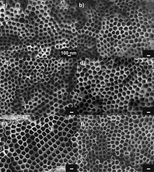 SEM top-view images of annealed Al2O3-coated(1 nm) TiO2 nanotube layers before (a) and after soakingin H3PO4 solutions with different concentrations:(b) 50 wt %, (c) 70 wt %, and (d) 85 wt % in total for 48 h (last8 h at 60 °C). SEM top-view images of reference uncoated amorphous(e) and anatase (f) TiO2 nanotube layers after soakingin H3PO4 solutions of 10 and 40 wt %, respectively,for 24 h. All the scale bars denote 100 nm.