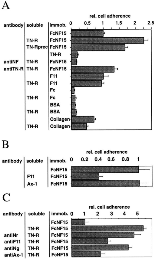 (A–C) The adherence of tectal cells to a neurofascin-Fc  substrate is enhanced in the presence of TN-R. Neurofascin fusion protein with the Fc portion of human IgG1 (FcNF15), the Fc  portion without neurofascin sequences (Fc), F11, BSA, or collagen were immobilized on petriperm dishes, and dissociated tectal cells were incubated in the presence or absence of TN-R (A  and C) or in the presence of F11 or axonin-1 (B). The immobilized proteins, the protein in solution, or the applied antibody is  given at the left of each panel. (A) 10 μg/ml or (C) 50 μg/ml of  TN-R was used to monitor the effects of the different antibodies.  The concentration of soluble F11 or axonin-1 was 20 μg/ml in B.  Long-term attachment (after 22 h) of cells was quantified with  the GENIAS imaging software, and the adherence of tectal cells  to neurofascin (FcNF15) was calculated to 1. Error bars indicate  SEM. TN-R was either provided in the supernatant of a neurofascin substrate during the whole culture period (FcNF15 + TN-R)  or washed out after a 1 h incubation period before adding the  cells (FcNF15 + TN-Rprec). Cells were also incubated in the  presence of Fab fragments of polyclonal antibodies specific for  neurofascin (antiNF), NrCAM (antiNr), F11 (antiF11), NgCAM  (antiNg), axonin-1 (antiAx-1), or TN-R (antiTN-R) at a concentration of 100 μg/ml.