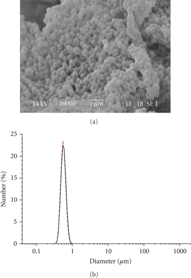 SEM image and particle size distribution of LG-13 NPs.